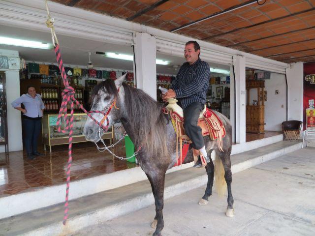 Chico zu Pferde
