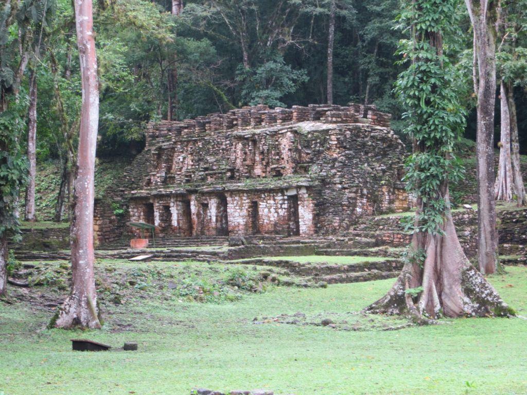 023 Yaxchilan - Einer der Tempel mitten im Dschungel