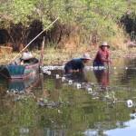 Fischen in der Lagune