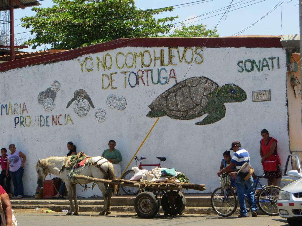 035-06 Leon - Ich esse keine Schildkröteneier