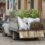 Gracias - Versorgung mit Gemüse