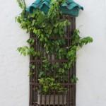 Cartagena - Fensterdeko