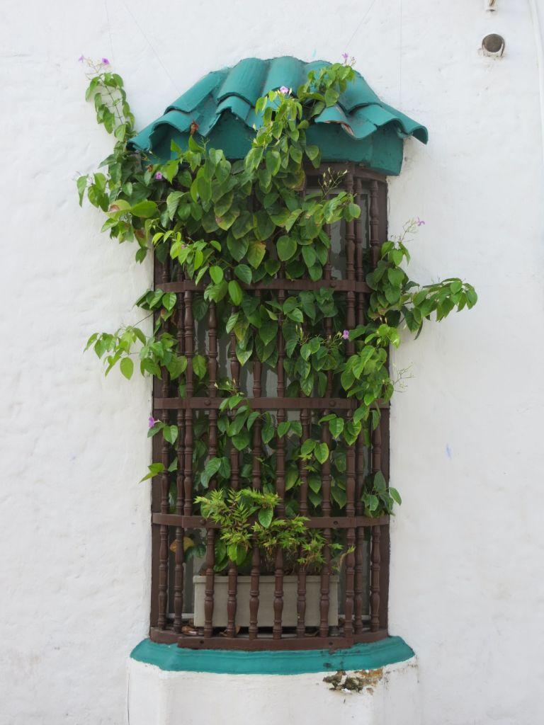038-05 Cartagena - Fensterdeko