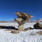 Arbol del Piedra - der Steinbaum