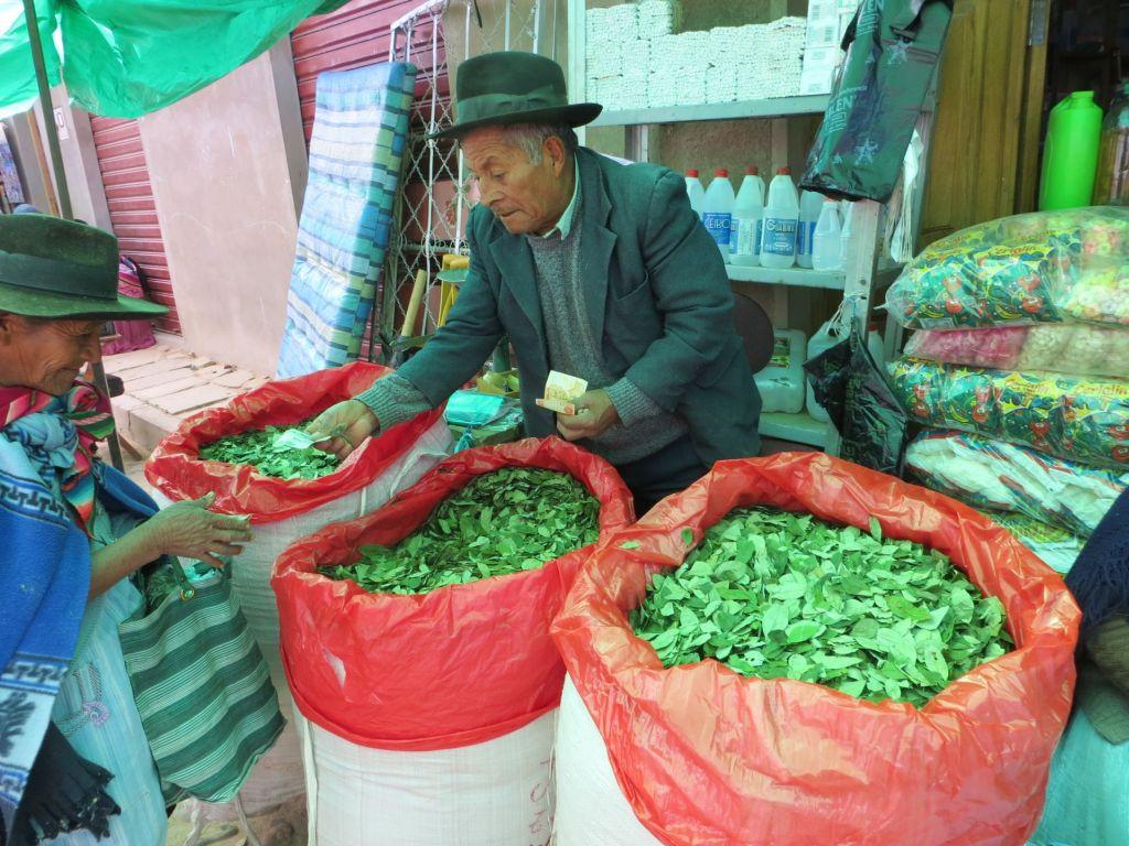 039-50 Verkauf von getrockneten Coca-Blättern, gut gegen Kälte, Hunger und Müdigkeit